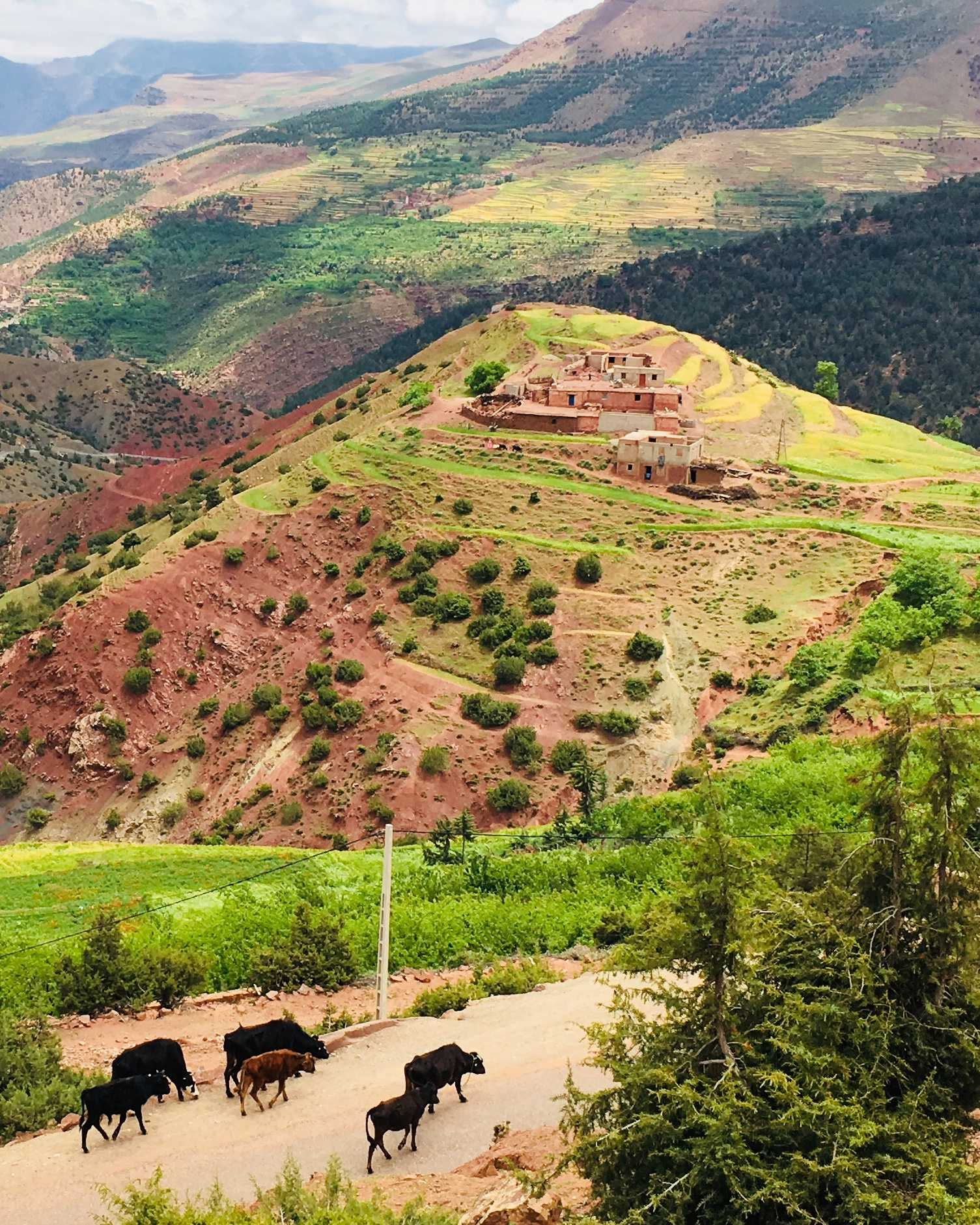 Full Day Trip To The 3 Berber Valleys And Atlas Mountains