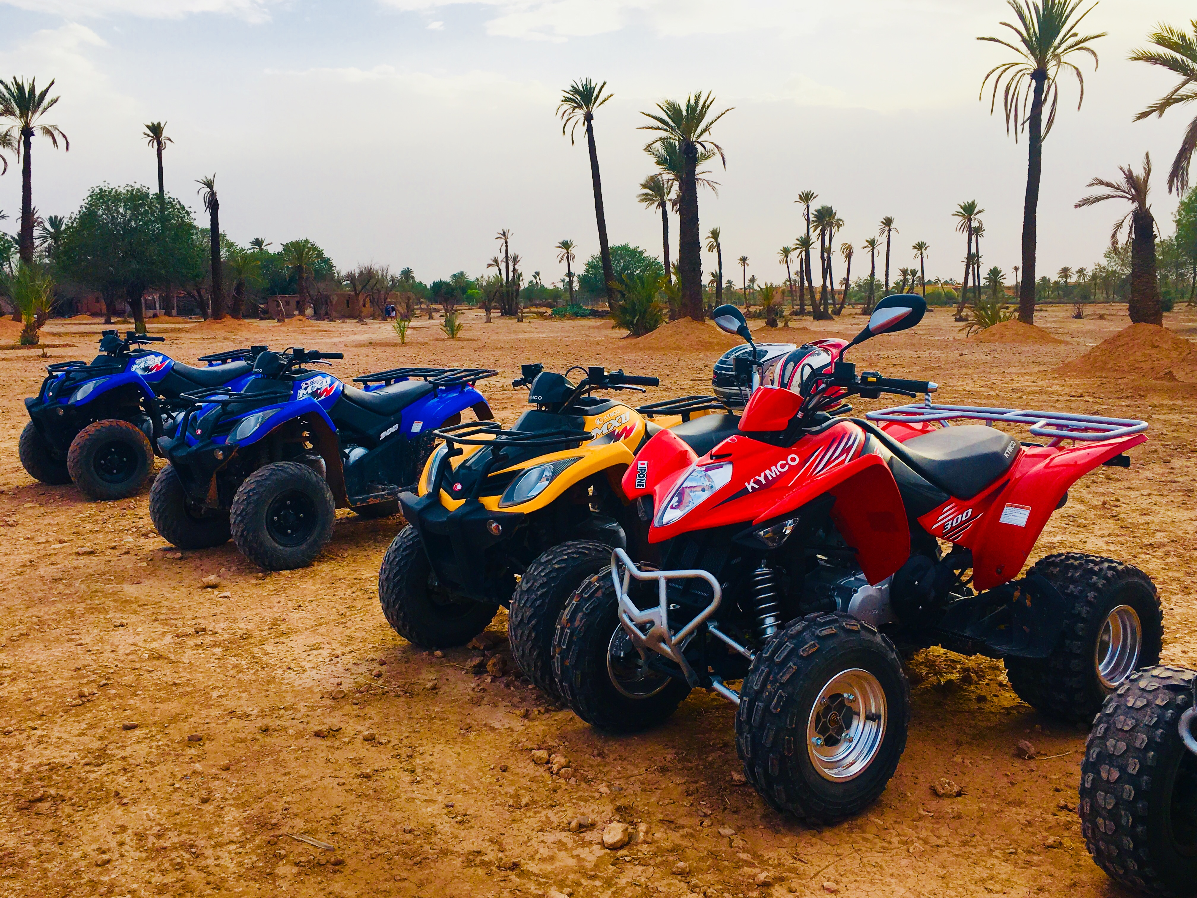 Quad Biking Safari In the palm grove of Marrakech